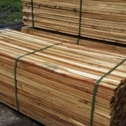 SAWN TIMBER WET